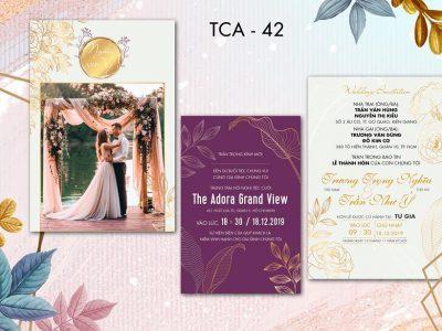 TCA-42